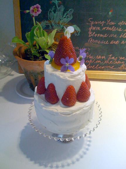 Margaret Furlong-Cake
