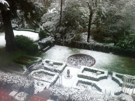 SNOW IN MY BACKYARD
